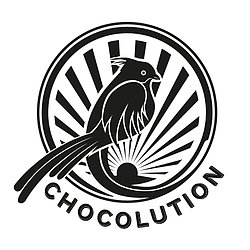 Chocolution