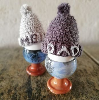 Father's Day Dad And Me Bobble Hat Egg Cosies