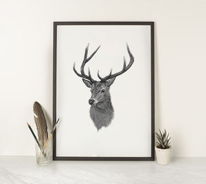 Henry Stag Illustration Print - posters & prints