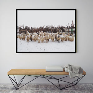 Follow Me, Canvas Art - shop by subject