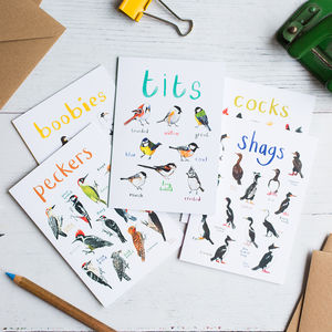 Set Of Five Illustrated Bird Pun Cards - birthday cards