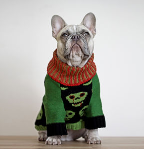 Zombie Dog Jumper - dogs