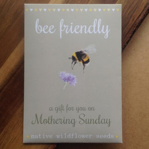 Watercolour Mother's Day Bee Friendly Wildflower Seeds - seeds & bulbs