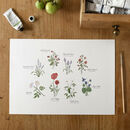 'British Wildflower Chart' A4 Giclée Print