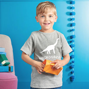 Personalised Dinosaur T Shirt - birthday gifts for children