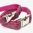 Summer Fruits Harris Tweed Dog Collar