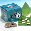 Grow Some Money Gro'pot Set