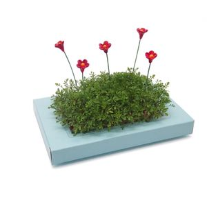 Miniature Gardens With Figures And Accessories - gardening