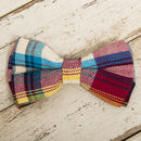The Marple Red Checked Dog Collar Bow Tie And Lead Set