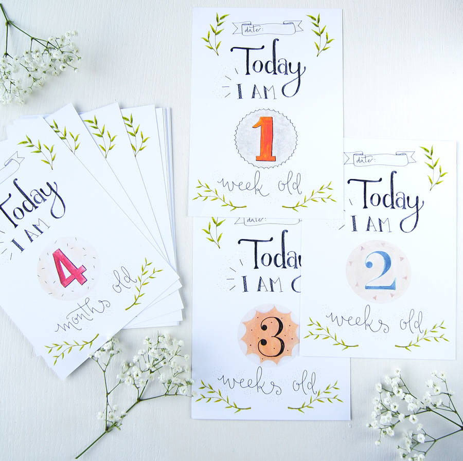 baby 1st year milestone cards by maggie s needle