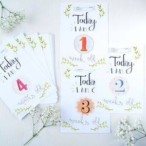 Baby 1st Year Milestone Cards
