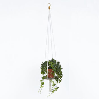 Plant Hanger With Screen Printed Wooden Base