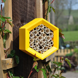 Handcrafted Bee Hotel