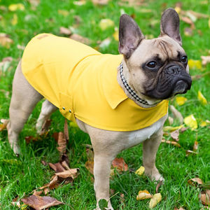 All Weather Dog Raincoat, With Carry Pouch