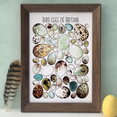 Bird Eggs Of Britain Wildlife Watercolour Print