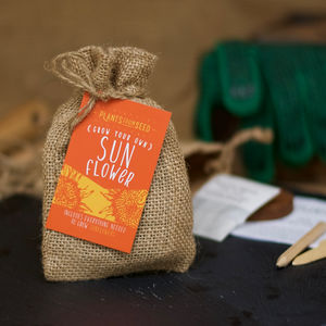 Grow Your Own Giant Sunflower Mini Plant Kit - wedding favours
