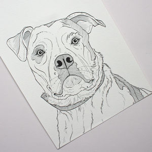 Personalised Pet Portrait Line Drawings - gifts for pet-lovers
