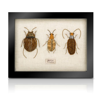 The Bullion Beetle Collection *Trio Of Beetles
