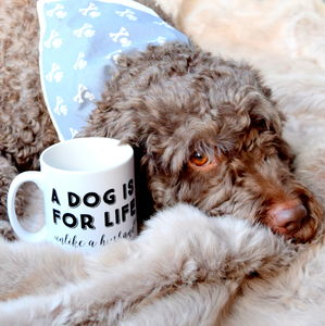 A Dog Is For Life Unlike A Husband Mug - pet-lover