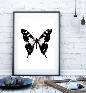 Black And White Butterfly Print - animals & wildlife