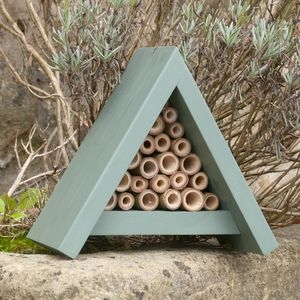 Bee Hotel - shop by interest