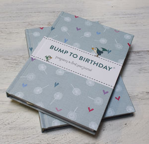 'Bump To Birthday' Journal - new baby keepsakes