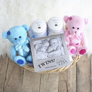 Double Deluxe Twin New Baby Gift Basket