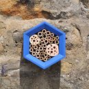 Barleywood Bee Hotel Front View