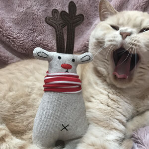 Catnip Randolf The Reindeer Cat Toy