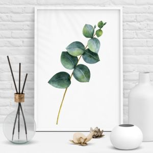 Eucalyptus Branch Green Watercolour Botanical Print