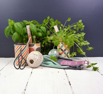 Trio Of Retro Herb Planters