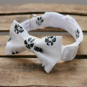 Paw Print Dog Collar - clothes & accessories