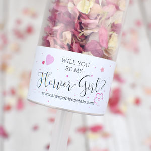 Will You Be My Flower Girl Confetti Pop - be my bridesmaid?