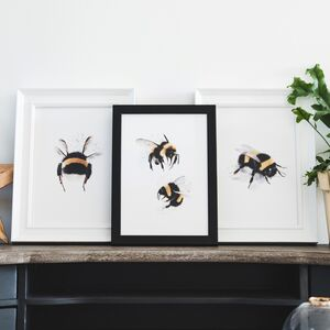 Set Of Three Bumblebee Illustration Prints
