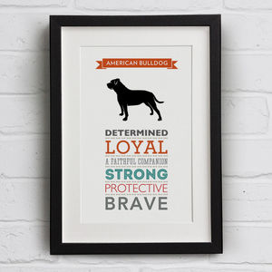 American Bulldog Dog Breed Traits Print - animals & wildlife