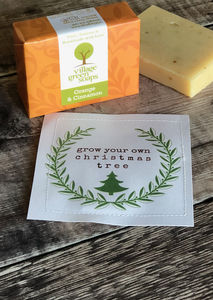 Grow Your Own Christmas Tree And Soap Set