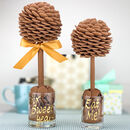 A Chocolate Tree With Cadbury Chocolate Buttons