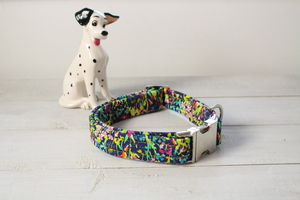 Mavis Liberty Dog Collar
