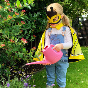Bee Dress Up And Seed Set