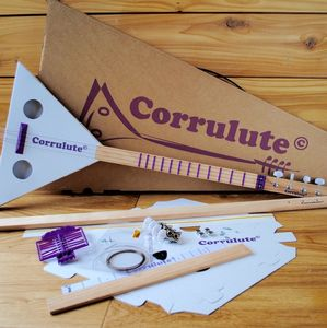 Make Your Own Acoustic Stringed Instrument Kit - gifts for music fans