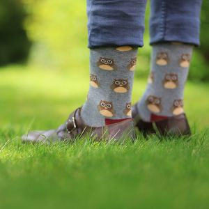 Gray Owl Socks