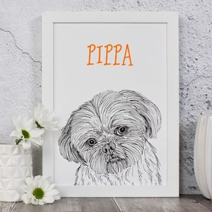 Shih Tzu Personalised Dog Portrait Print