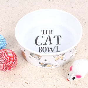 Curious Cats Pet Bowl