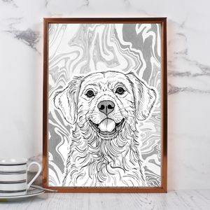 Pet Portraits With Marbled Backgrounds