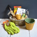 Green Fingered Kids Grow Your Own Sunflowers Set