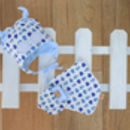 Newborn Ladybird Gift Set Of Hat, Bib And Mittens Blue