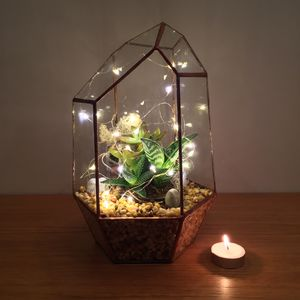 Fully Assembled Aztec Gem Terrarium - house plants