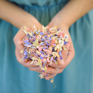 Biodegradable Wedding Confetti - confetti, petals & sparklers