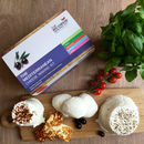 Make Your Own Mediterranean Cheese Making Kit