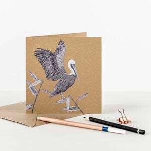 Brown Pelican Recycled Greetings Card